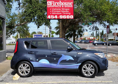 Dolphin Jumping Car Graphic